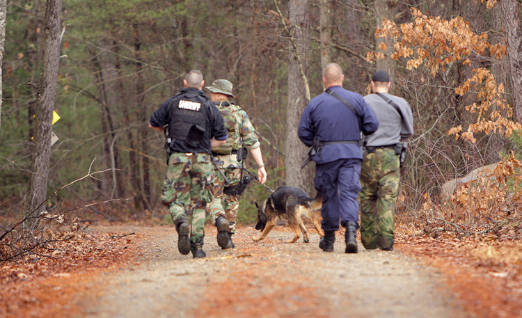 A police K-9 team scouts on a road in the Massabesic Experimental Forest in Alfred today.
