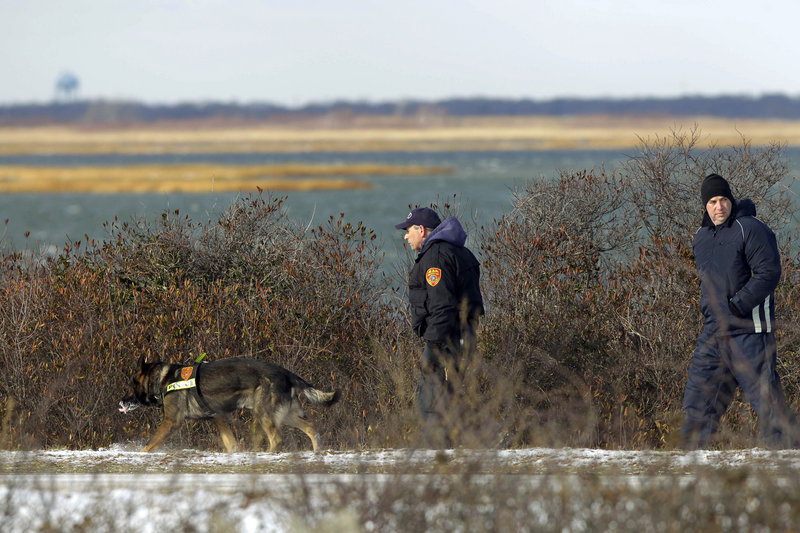 Authorities search the brush for human remains at Cedar Beach near Babylon, N.Y., in December 2010. Detectives now think only one person is responsible for the deaths.