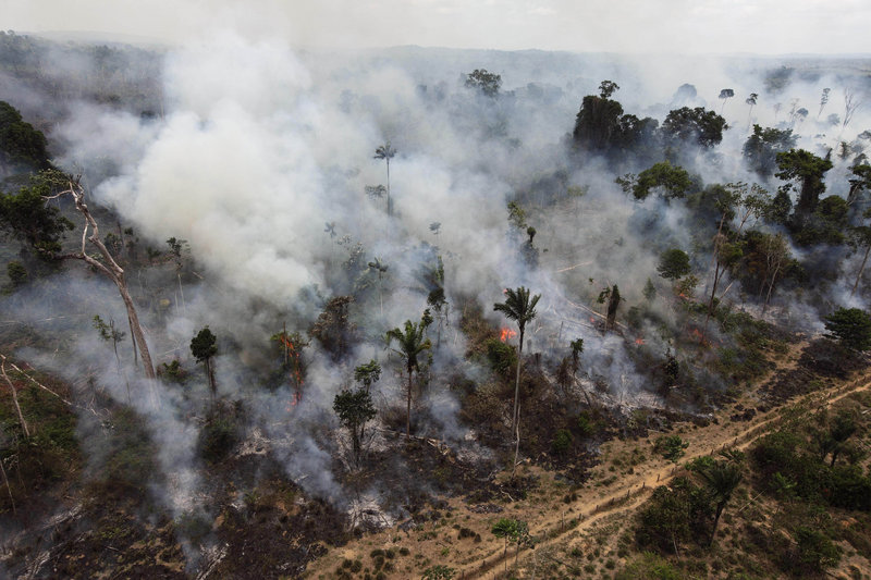 A section of forest in the Amazon is illegally burned on the outskirts of Novo Progresso, in the northern Brazilian state of Para, in the September 2009 photo. Annual destruction of the Amazon rain forest fell to its lowest recorded level this year, Brazilian authorities said Monday.