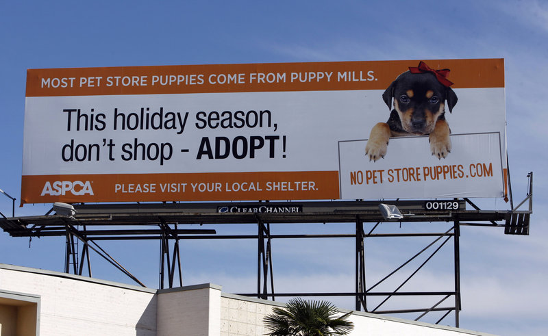 Atop a building in Los Angeles on Tuesday, a billboard encourages people to fight puppy mills by boycotting pet stores that sell puppies. The American Society for the Prevention of Cruelty to Animals and other groups are stepping up efforts to stop sales from puppy mills.