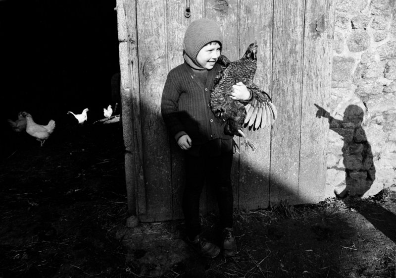 """Marie-Christine and Her Hen,"" 1975, from ""Madeleine de Sinety: Photographs,"" which concludes its run at the Portland Museum of Art on Dec. 31."