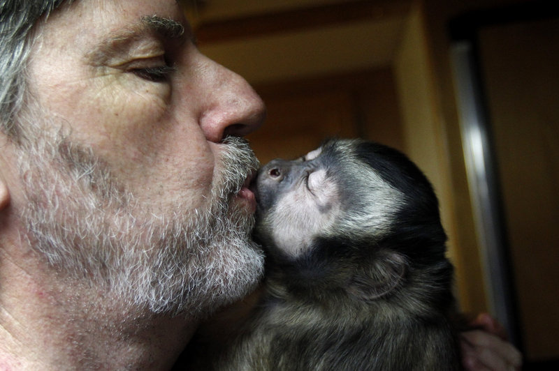 Jim Clark kisses one of his four Capuchin monkeys somewhere in Texas. He fears that wildlife agents will seize the four monkeys he's raised for 10 years.