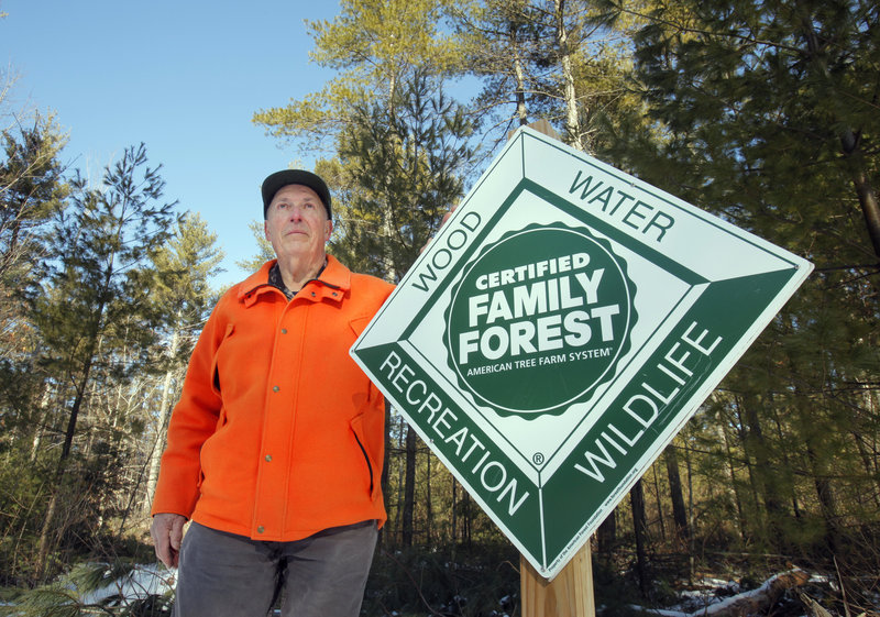 Towle manages his land as a forestry resource, primarily selling tall eastern white pines that grow there, and keeps it open for some recreational use, including snowmobiling and cross country skiing.