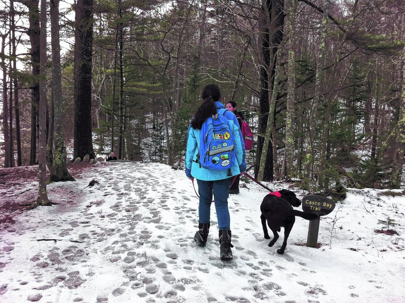 Wolfe's Neck Woods State Park in Freeport is a great place to bring the kids and dog for winter hiking. The walking is fairly easy and the ocean view makes up for light snow.