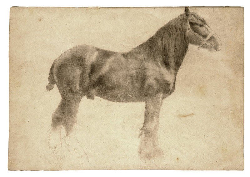 """Plough Horse,"" a work in graphite by Edgar Degas, from ""Edgar Degas: The Private Impressionist,"" opening Feb. 23 at the Portland Museum of Art."