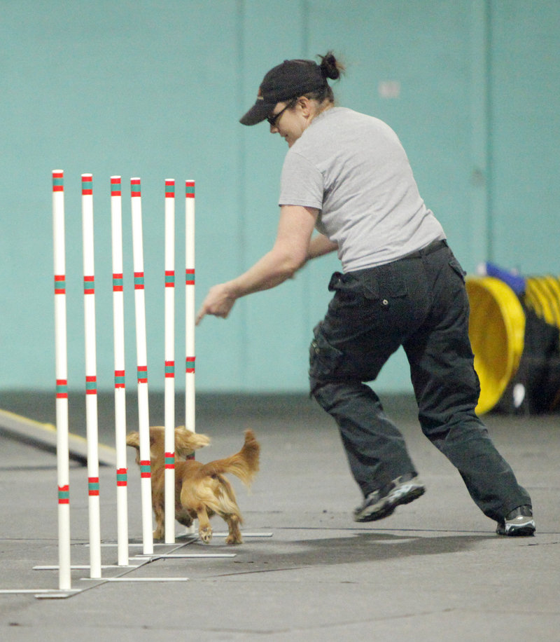 Sarah Power and her dog Neptune run through an agility course at Happy Tails in Portland on Saturday. Neptune won first place in the wildcard event. The competition continues today.