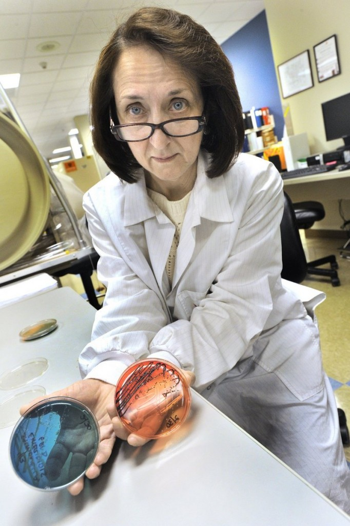 Cathy Dragoni, who manages the microbiology department at NorDx, holds control examples of salmonella cultures at the Scarborough laboratories late last month. NorDx offers a variety of testing services for salmonella and other pathogens.