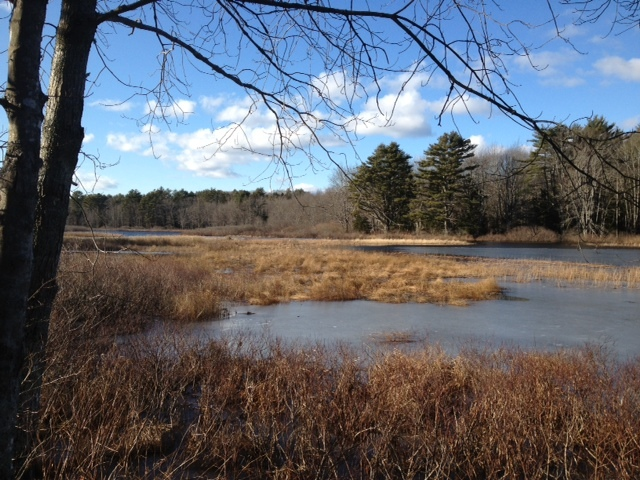 Boyd Pond, a wide section of the Pemaquid River, is one of the attractions for hikers traversing the many trails at Crooked Farm Preserve in Bristol.