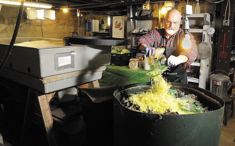 Jonathan Dyer feeds a bag of shredded lettuce to a tub of red wiggler worms at Black Gold Vermiculture & Research.
