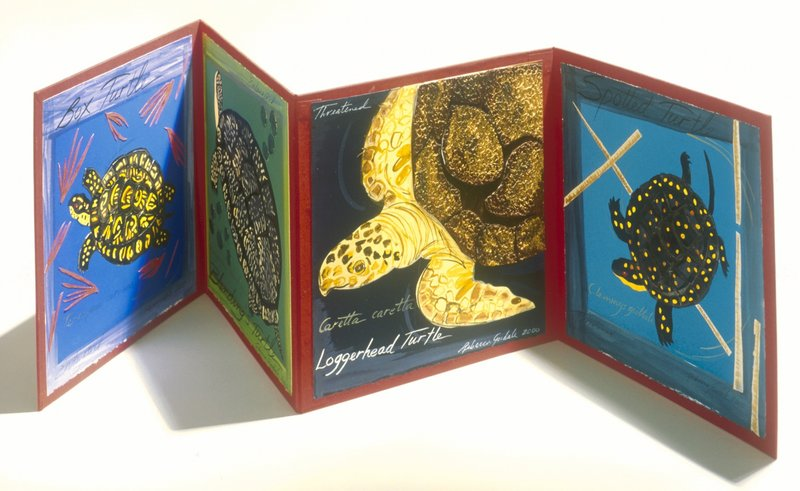 """Four Maine Turtles"" by Rebecca Goodale."