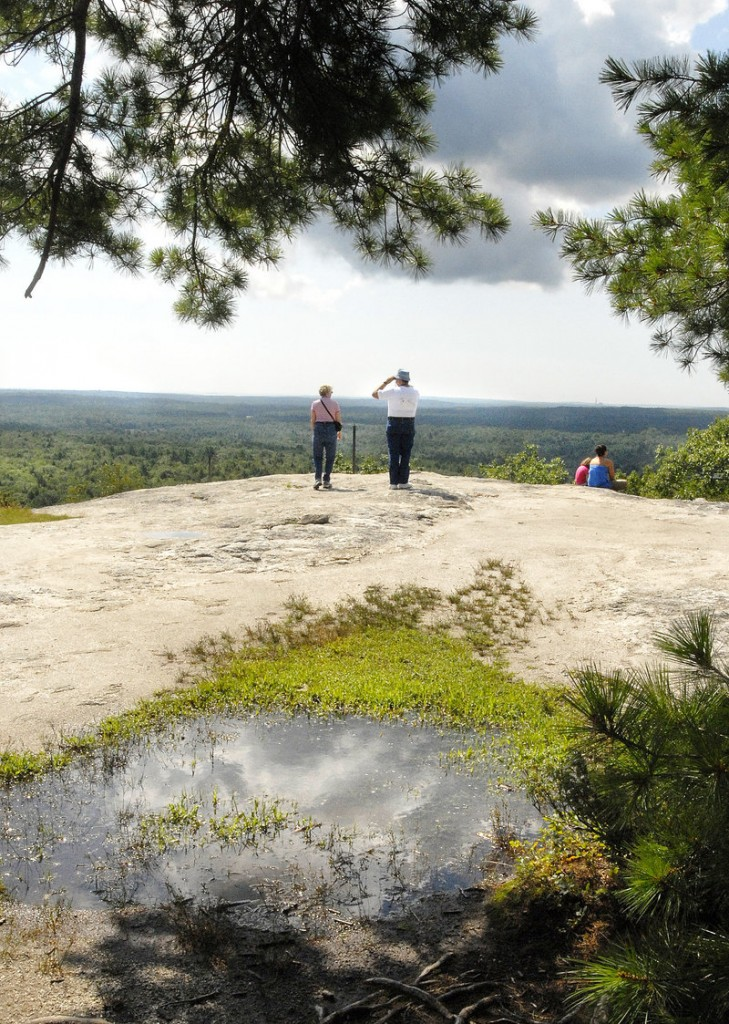 Bird lovers will be scanning the skies over Bradbury Mountain in Pownal during the Feathers Over Freeport birding festival on Saturday and Sunday.