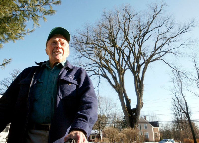"In this December 2009photo, Frank Knight, then 101, stands in front of an elm tree known as ""Herbie"" in Yarmouth."