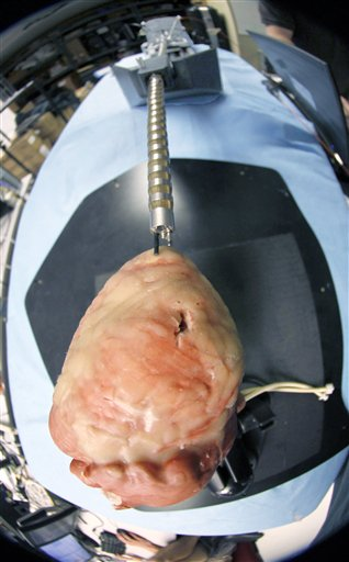 One of the robots being developed at Carnegie Mellon University penetrates a model of a heart.