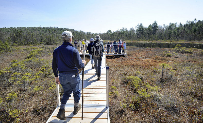 Chuck Dinsmore, a retired professor of medical research and high school teacher, follows hikers on a new bog boardwalk trail as he leads a class.