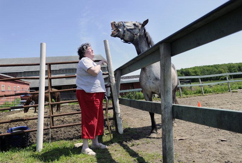 Maureen Clark of Saco meets Braveheart, a mustang with Ever After Mustang Rescue, at Bush Brook Farm in Biddeford on Sunday, Maine's first Equestrian Open Barn Day. More than 40 horse farms across the state participated.