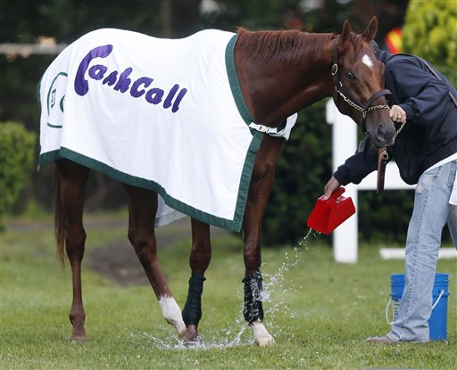 Hot walker Benjamin Perez pours water on I'll Have Another after training at Belmont Park in Elmont, N.Y., today.