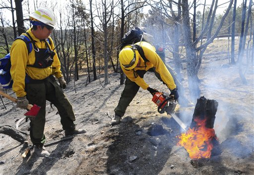 Arizona's Hopi 5 Hotshot Ian Nuvamsa, at left, watches as teammate Peterson Hubbard cuts a burning stump while battling the Little Bear fire near Ruidoso, N.M.