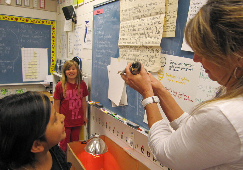 Middleton Heights Elementary Principal Robin Gilbert holds a baby chick in an all-girl classroom of first- and second-graders.