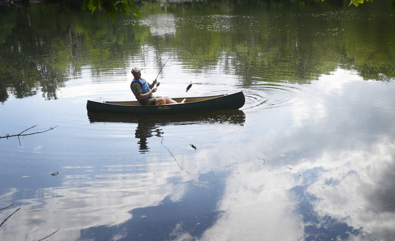 "A fisherman reels in a small fry while fishing along the banks of the Saco River in Buxton on Thursday. ""No keepers yet,"" he said before paddling away."