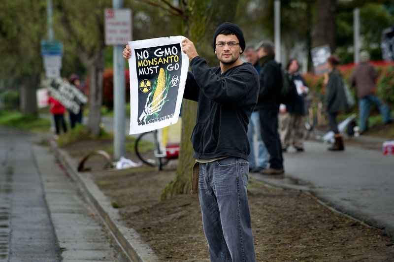 A man protests outside the Monsanto facility in Davis, Calif., in March. The FDA has ruled GMO foods – made from genetically modified organisms – safe, but concern persists.
