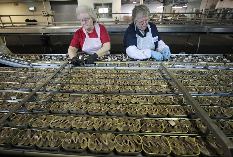 In this April 2010 file photo, workers fill cans with sardine steaks at the former Stinson sardine cannery in Gouldsboro.