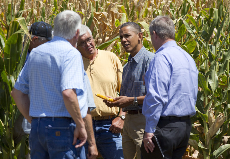 President Obama and Agriculture Secretary Tom Vilsack, right, inspect drought-damaged corn Monday on a family farm in Missouri Valley, Iowa.
