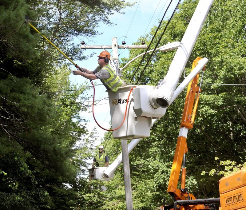Jason Perkins, at rear, and Patrick Gregory, both of Asplundh Tree Expert Co., trim trees along power lines in Bristol last month, as part of CMP's five-year program.