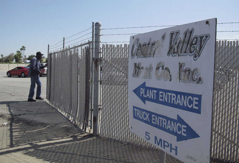 A security guard opens a gate at the Central Valley Meat Co. Regulators shut down the California slaughterhouse after they received a video that appears to show animal mistreatment.