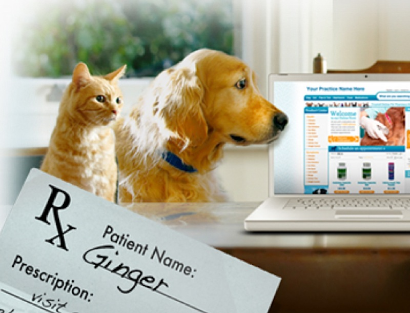 Vets First Choice, an online veterinary pharmacy, is ranked as the 30th-fastest growing company in the country. Above, an image from the company's website.