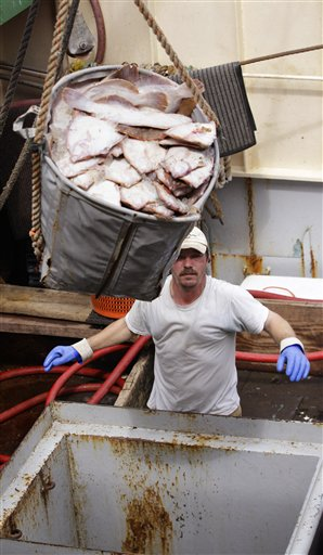 Fishing boat crewman Jeremy Prior offloads flounder from in New Bedford, Mass., in this May 14, 2012, photo. New Bedford had the highest-valued catch of any port in the U.S. for the 12th straight year, due largely to its scallop fishery.