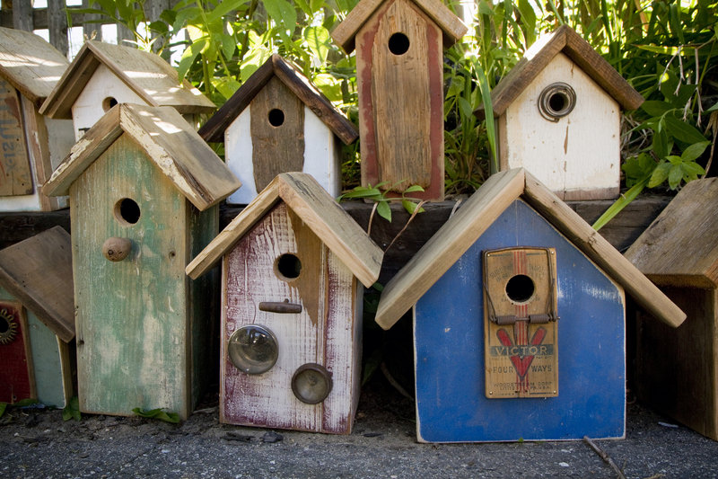 Some of Little's birdhouses.