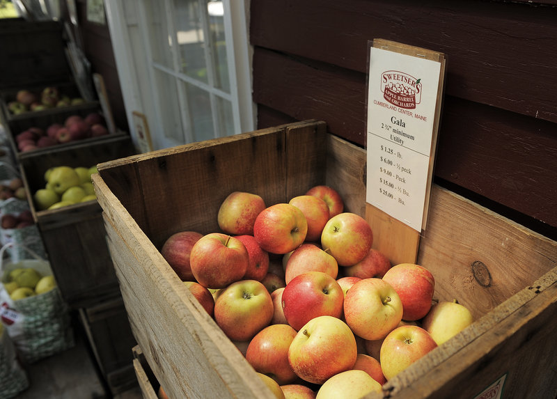 A crate of Gala apples beckons customers at Sweetser's Apple Barrel and Orchards in Cumberland last weekend.