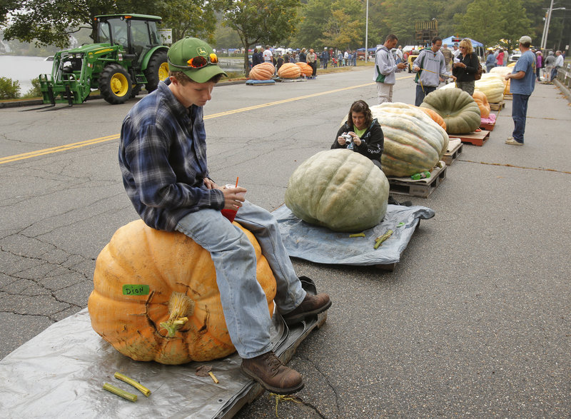 A dejected-looking Lucas Dion sits on his father's pumpkin while waiting to weigh his own gourd at Sanford Harvest Daze. Lucas' pumpkin weighed in at 185.5 pounds, but rot disqualified it from winning a prize.