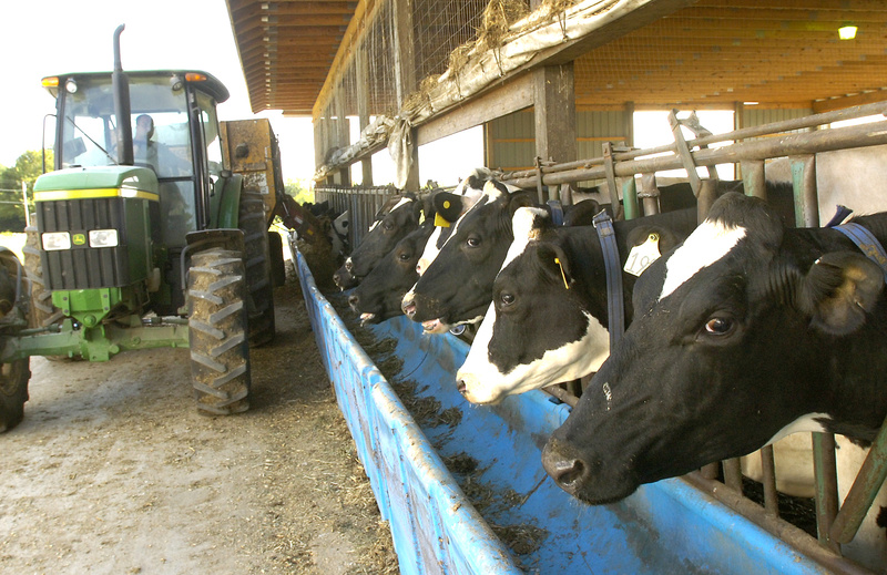 Brigeen Farms in Turner and other Maine dairy farms have been left without a safety net because Congress has not passed a farm bill.