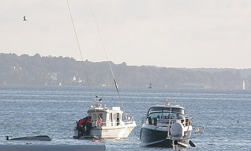 This photo taken by a witness just after the Sept. 21 boating accident shows the overturned skiff, left, the cabin cruiser, right, with the Coast Guard Auxiliary pulling a man from the water.
