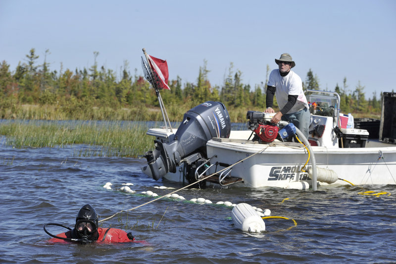 Scuba divers working with New England Milfoil have removed more than 42,000 gallons of invasive plants from Great Pond while off-duty game wardens do boat checks to improve the water quality of Maine's ponds and lakes.
