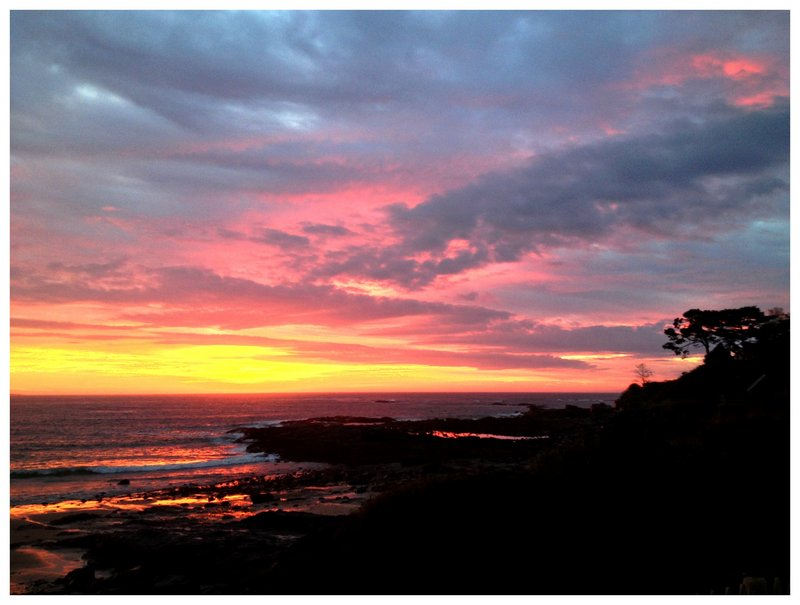 Downeast dawn's magic breaks through the horizon at Prouts Neck in Scarborough, replacing the shrouds of night with a vivid collage of gold, silver, pink and maroon, and is artfully captured by early riser Ann Blanchard.