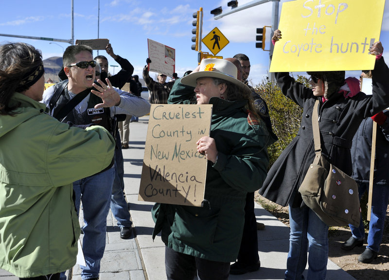 Esteban Marquez, second from left, a supporter of a coyote hunting contest, confronts protester Jean Crawford, center, in Los Lunas, N.M., on Nov. 10.