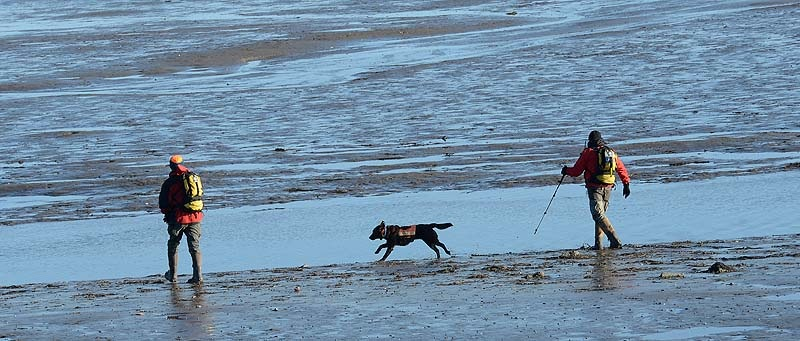 Searchers along with a search dog walk make their way out to Trott Island off Cape Porpoise on Monday, December 24, 2012. Zachary Wells and Prescott Wright, have been missing from Kennebunkport since Wednesday.
