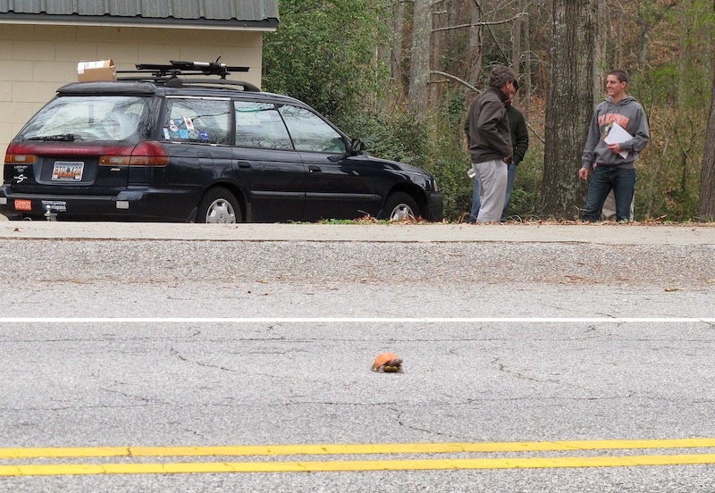 In this Dec. 12, 2012 photo, Clemson University student Nathan Weaver, right, talks with his professor, Rob Baldwin, left, as they wait to see if a fake turtle he is using in his research is run over in a road near Clemson, S.C. Weaver is placing the fake turtle in roads near campus and seeing how many drivers intentionally run over it. (AP Photo/Jeffrey Collins)