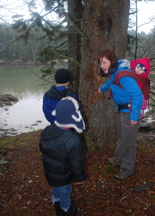 Tracey Hall, environmental educator of the Boothbay Region Land Trust, discusses with children a tree on the Gregory Trail that might have hosted a banquet for woodpeckers.