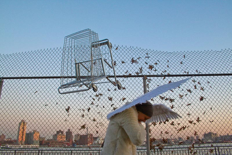 """""""Shopping Cart, Wings"""" by Tod Seelie from the Bakery Photocollective's Photo A Go Go auction."""