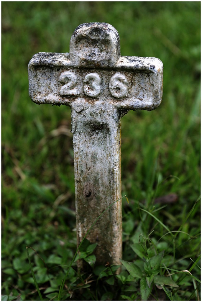 A small cross marks the burial site of a worker who was part of the original construction of the Panama Canal by the French.