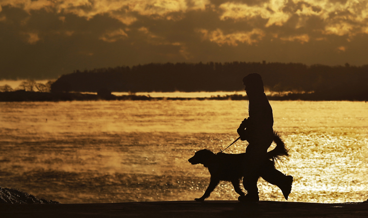Amy Alward of Portland walks with her 3-year-old flat-coated retriever, Coali, just after sunrise Wednesday.