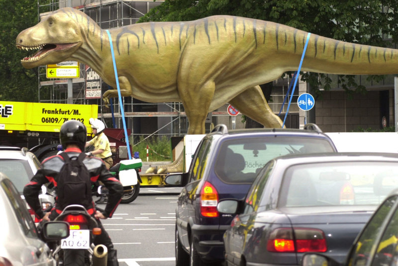 A model that depicts Tyrannosaurus rex correctly is transported to a museum in Frankfurt, Germany, in 2002. When researchers asked college students and children to draw a T. rex, most gave it an upright posture.