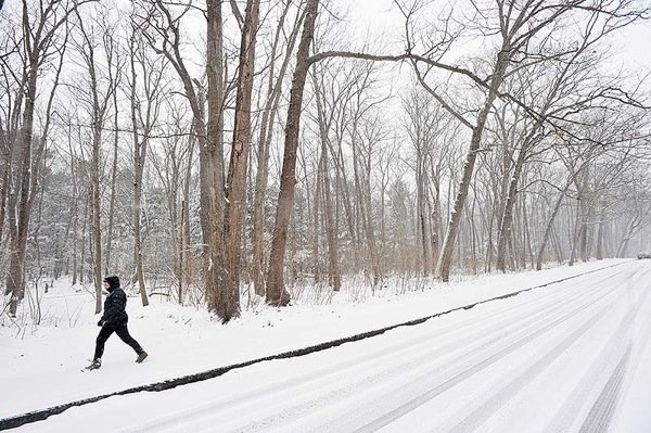 A Portland resident takes a walk along Baxter Woods as another snow storm begins to develop in the Portland area on Tuesday morning.