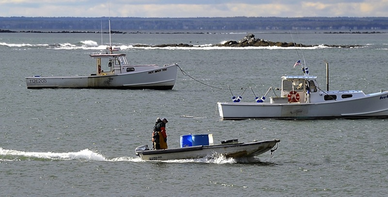 "In this December 11, 2012 file photo, lobster boats in Kettle Cove, Cape Elizabeth. A proposed bill would permit trawlers to sell ""incidentally caught"" Maine lobsters, something lobstermen strongly oppose."