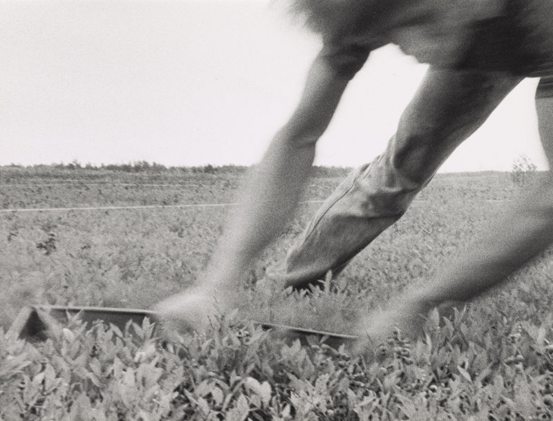 """Raking Close Up, (John Boy),"" circa 1999, gelatin silver print."