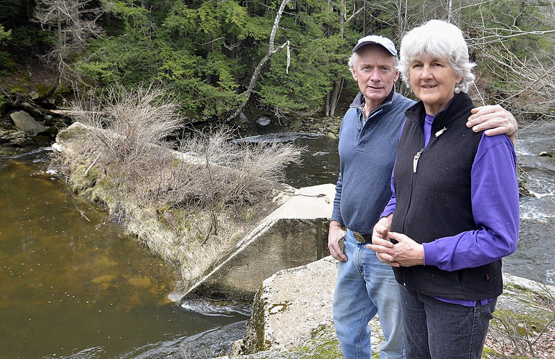 """We think that rather than having this relic sitting here as an obstacle, get rid of it and restore this section of the river,"" said Fred Fauver, with his wife, Sharon Townshend, at the dam on Chandler Brook, which runs through their property."