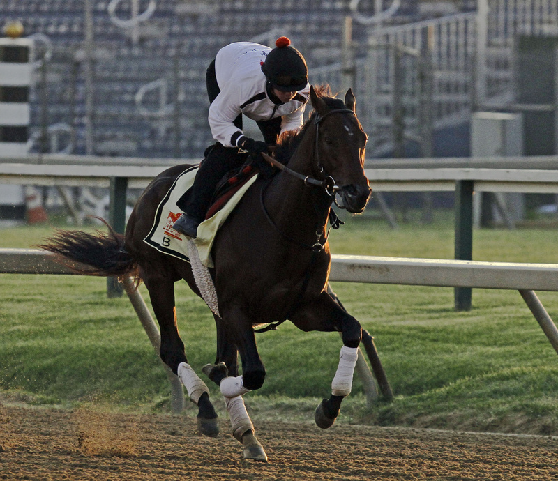 Exercise rider Jennifer Patterson gallops Preakness Stakes favorite and Kentucky Derby winner Orb at Pimlico Race Course on Friday in Baltimore. The Preakness is scheduled for Saturday.